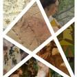 Esperientzia digitala: 7 obra, 7 museo