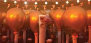 The Ostrich Politic