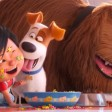 Mascotas 2 (The secret Life of Pets 2, 2019)