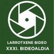XXXI. Bideoaldia