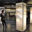 Museo DogA